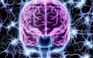 Обследование головного мозга: виды диагностики