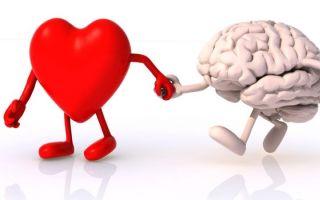 Гимнастика для сосудов головного мозга