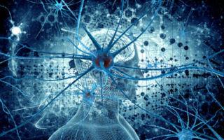Киста головного мозга — виды заболевания