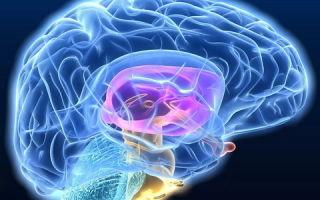 МРТ сосудов головного мозга и сосудов шеи