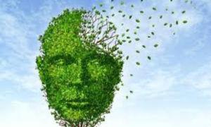 Дисциркуляторные изменения головного мозга