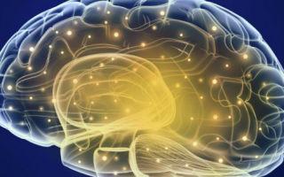 Сколько живут при злокачественной опухоли мозга. Инвалидность