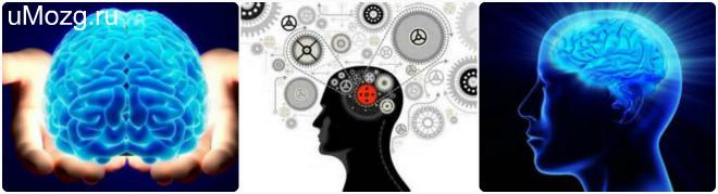 профилактика здоровья сосудов мозга