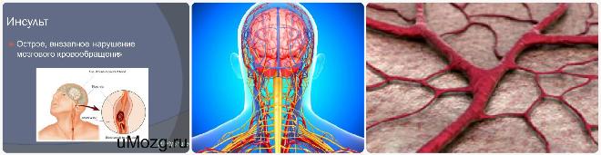 Мозговое кровообращение симптомы
