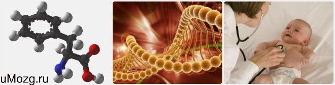 Инвалидность при фенилкетонурии в 2016 году