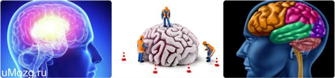 фитнес для мозгов