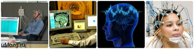 Функции головного мозга