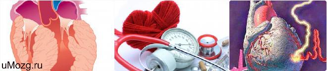 заболеть артериальной гипертензией памятка, патофизиология, эндометрия