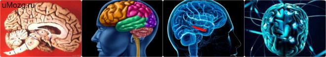 Резидуальные изменения головного мозга