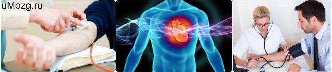 болезнь артериальной гипертензии лечение, патофизиология, эндометрия