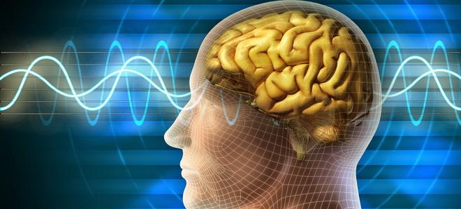 ЭЭГ мозга что это такое