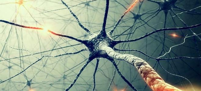 мозг тайны сознания смотреть