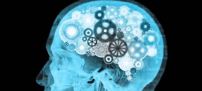 мозг тайны сознания