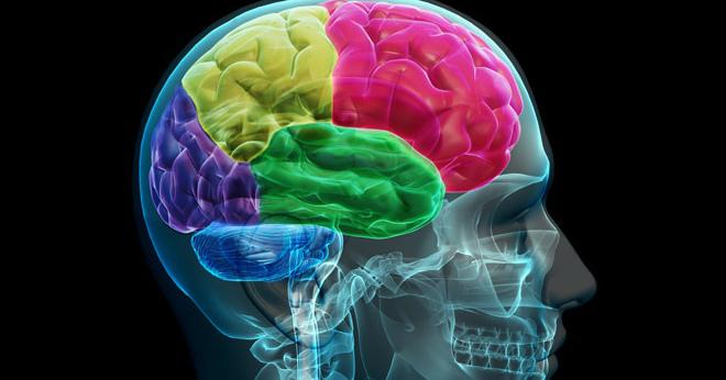 поражение лобных долей мозга